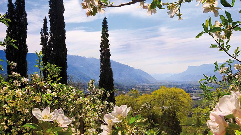 Frühlingszauber im Südtirol